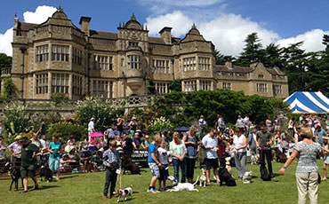 Charitable Events at Stokesay Court