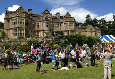 What's On at Stokesay Court